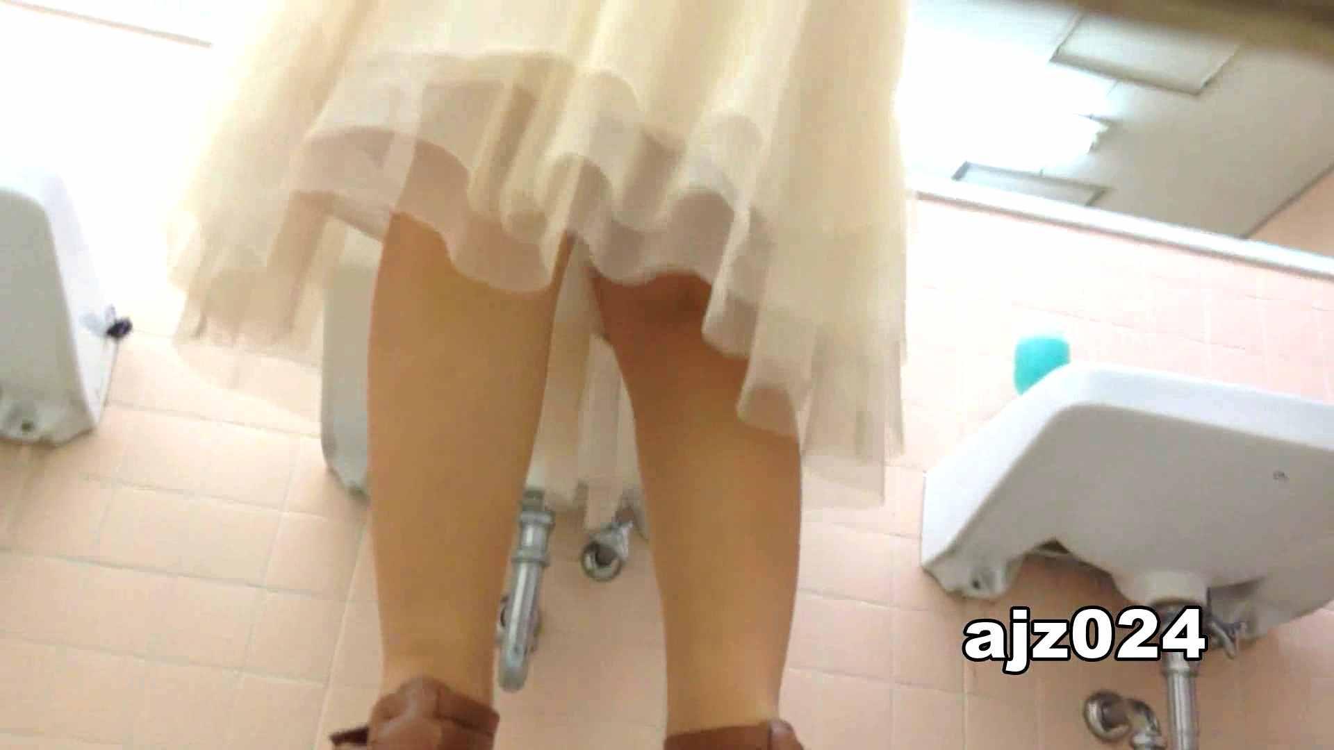 某有名大学女性洗面所 vol.24 排泄 覗きオメコ動画キャプチャ 66連発 17