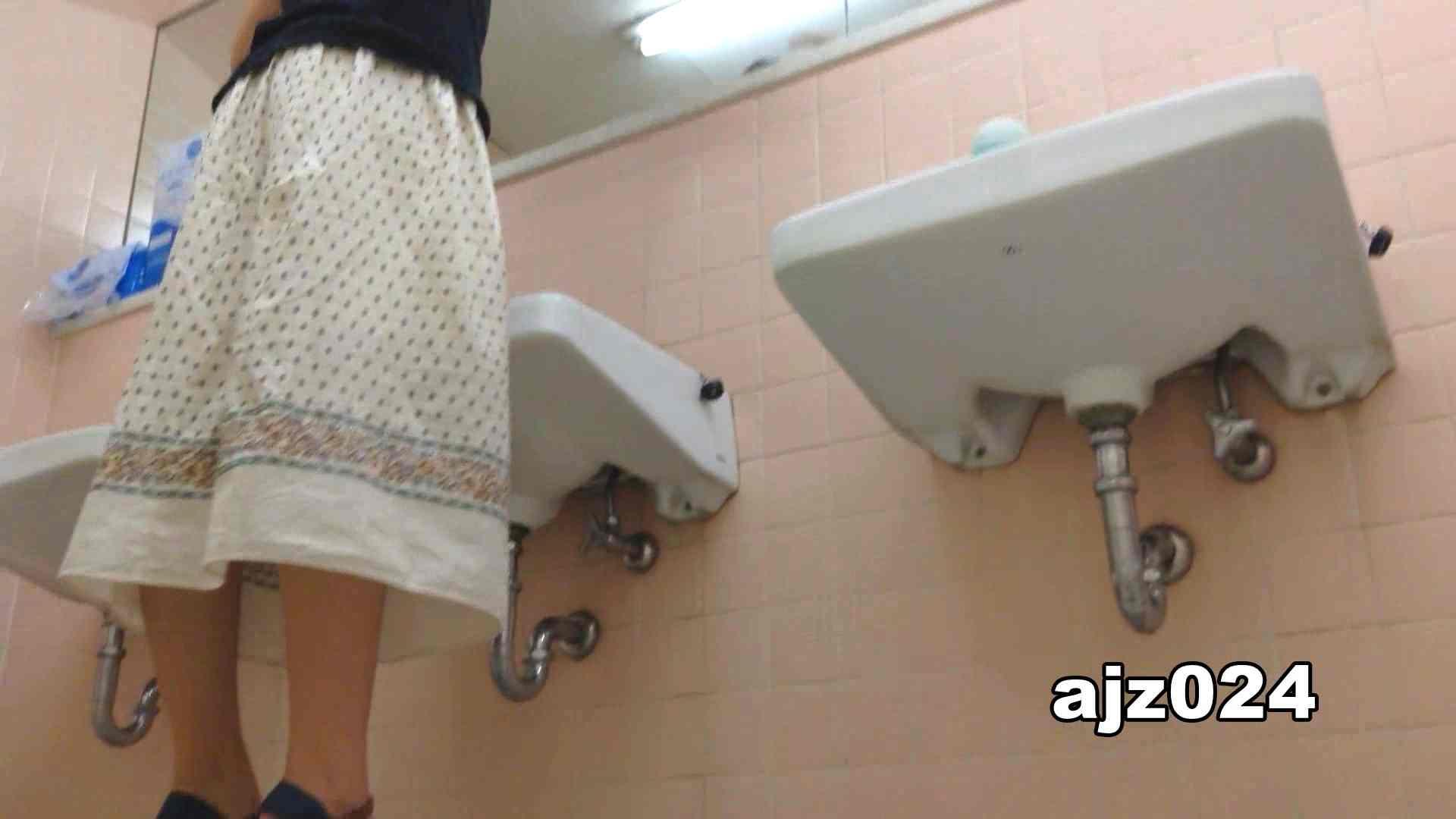 某有名大学女性洗面所 vol.24 潜入 盗み撮りAV無料動画キャプチャ 66連発 21