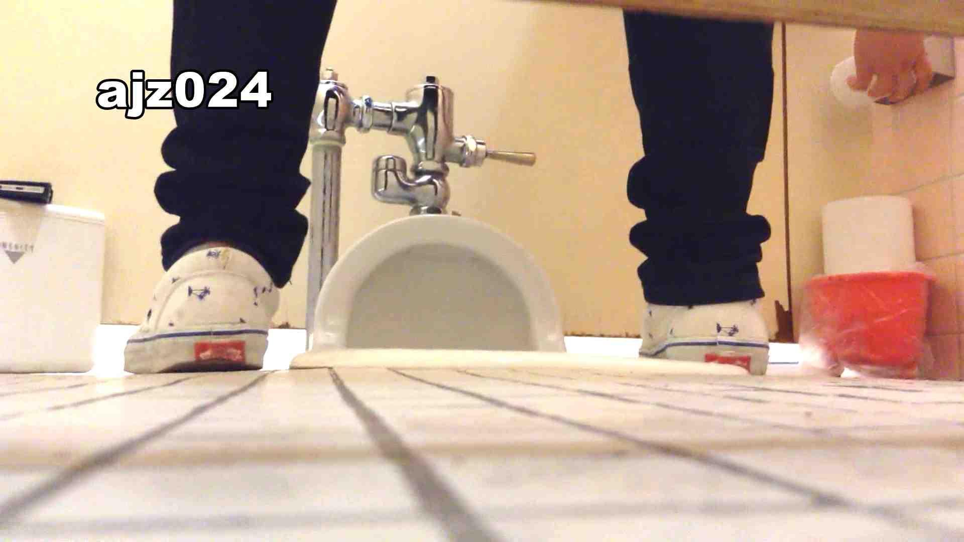 某有名大学女性洗面所 vol.24 排泄 覗きオメコ動画キャプチャ 66連発 35