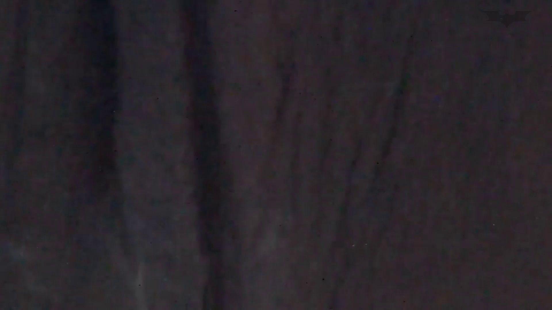 JD盗撮 美女の洗面所の秘密 Vol.61 洗面所 ワレメ動画紹介 103連発 29