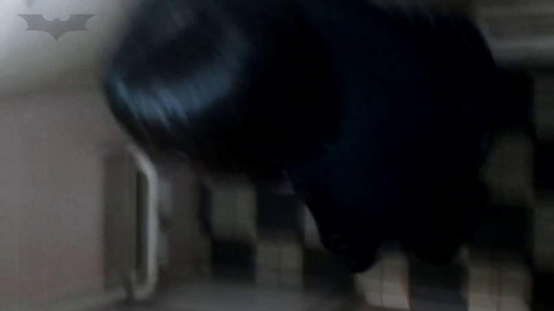 ▲復活限定D▲化粧室絵巻 駅舎編 VOL.12 SEIFUKUマフラー特集!! OL女体 | 0  73連発 63