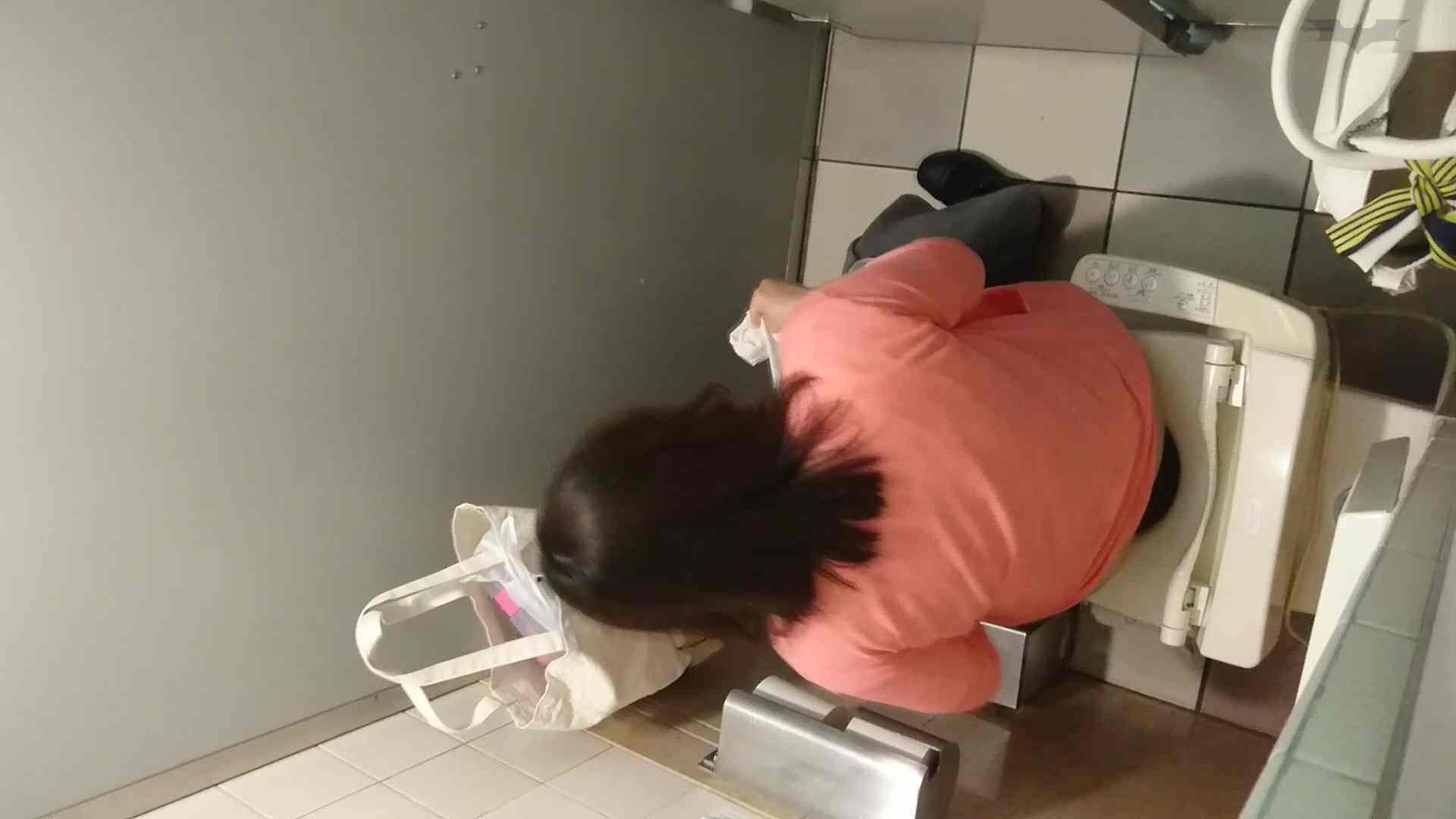 化粧室絵巻 ショッピングモール編 VOL.20 OL女体 | 0  61連発 5