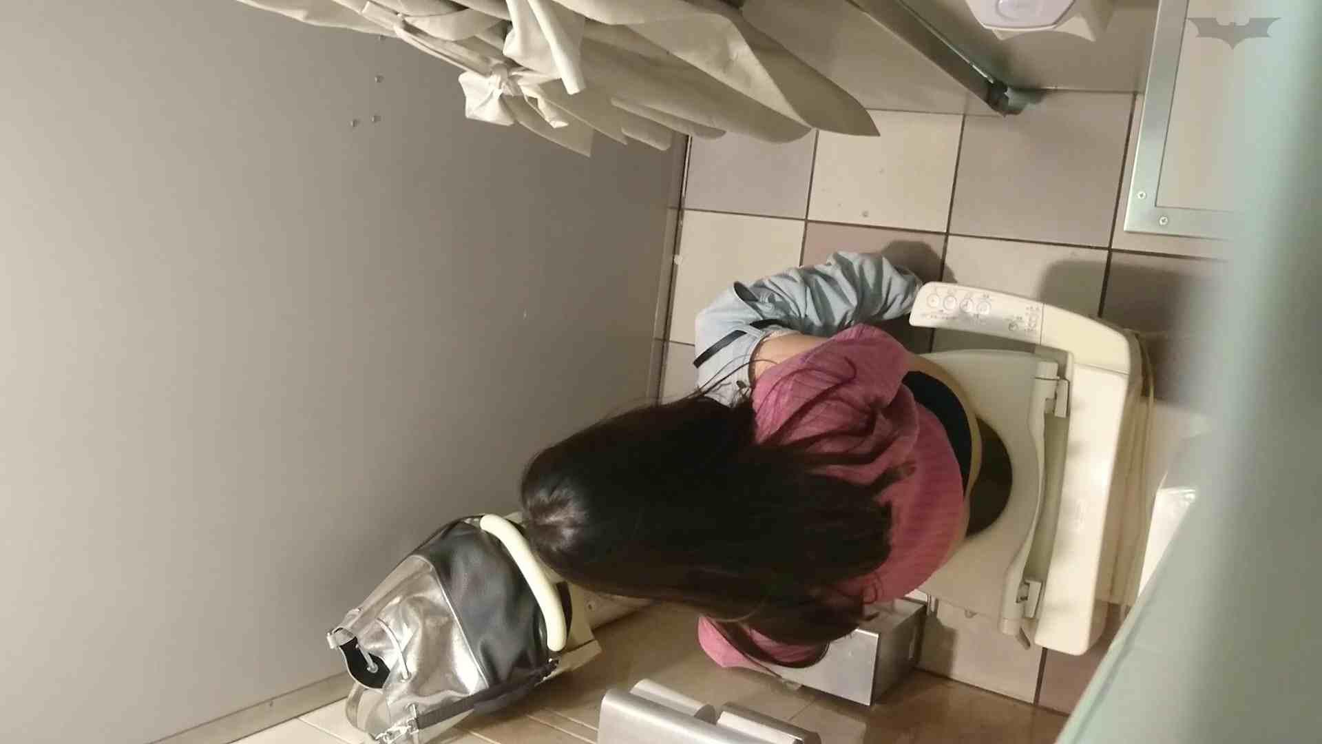 化粧室絵巻 ショッピングモール編 VOL.20 OL女体 | 0  61連発 25