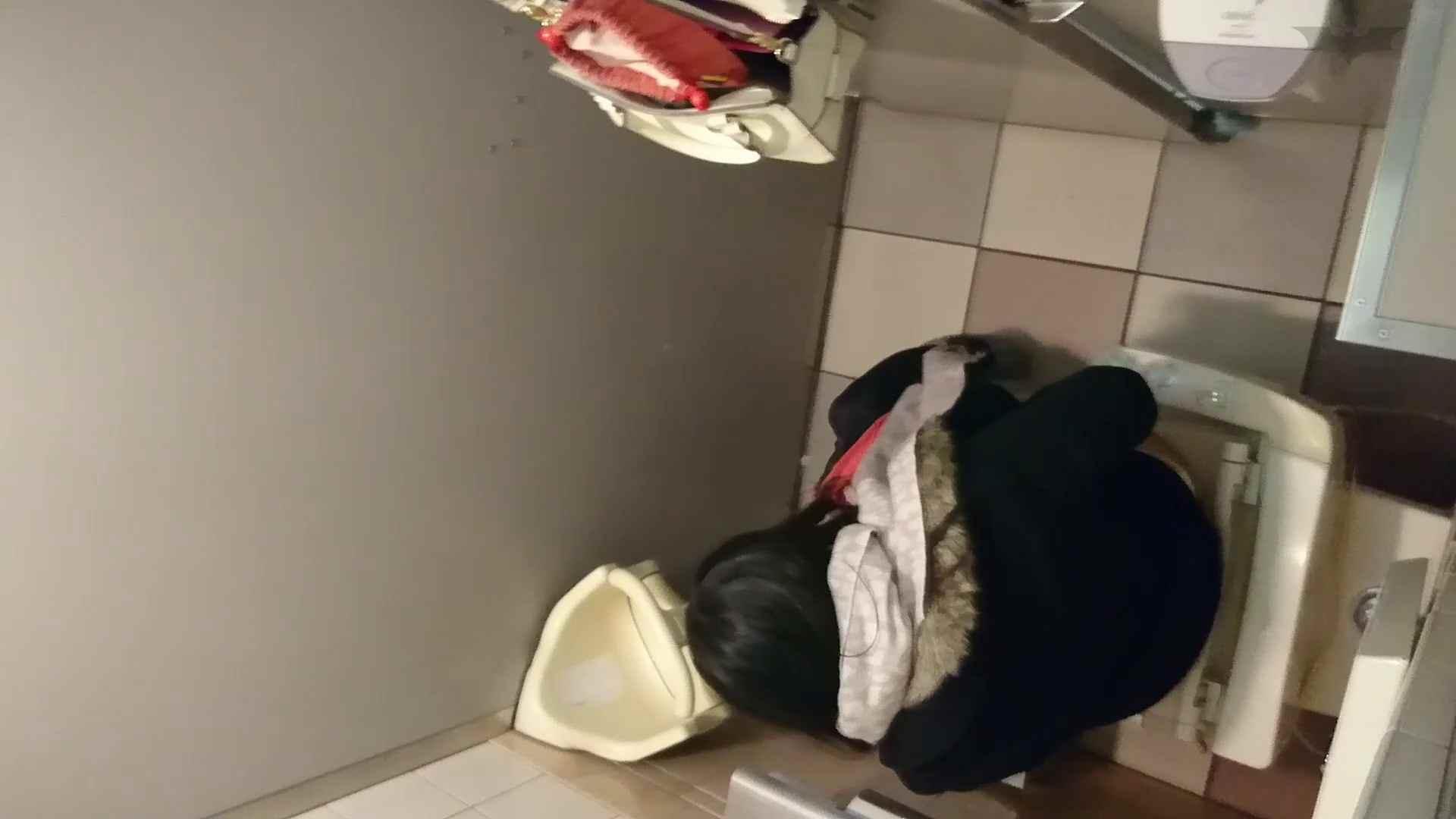 化粧室絵巻 ショッピングモール編 VOL.05 OL女体   0  73連発 21