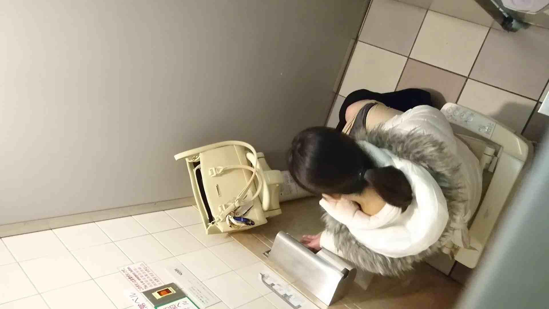 化粧室絵巻 ショッピングモール編 VOL.05 OL女体   0  73連発 51