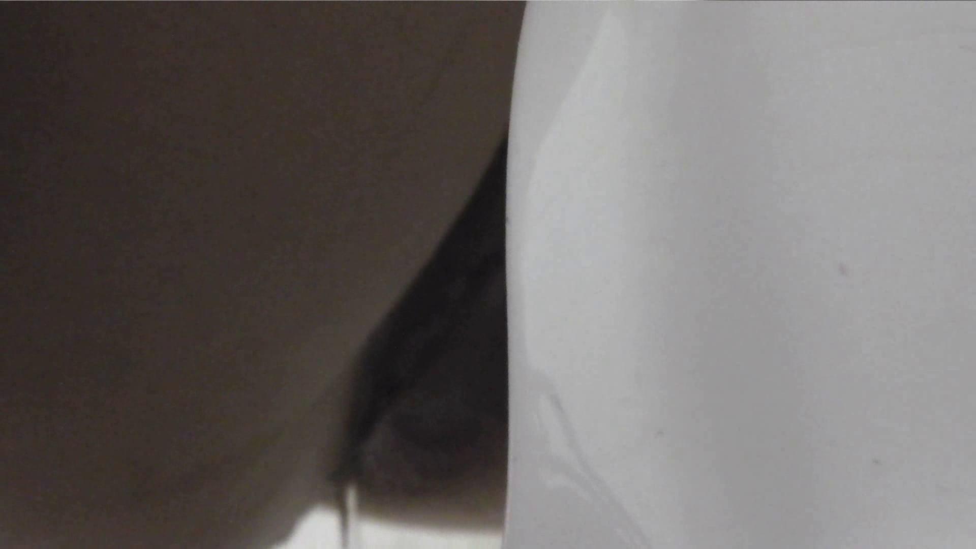 洗面所特攻隊 vol.001 清楚な美脚さん 洗面所   OL女体  104連発 15