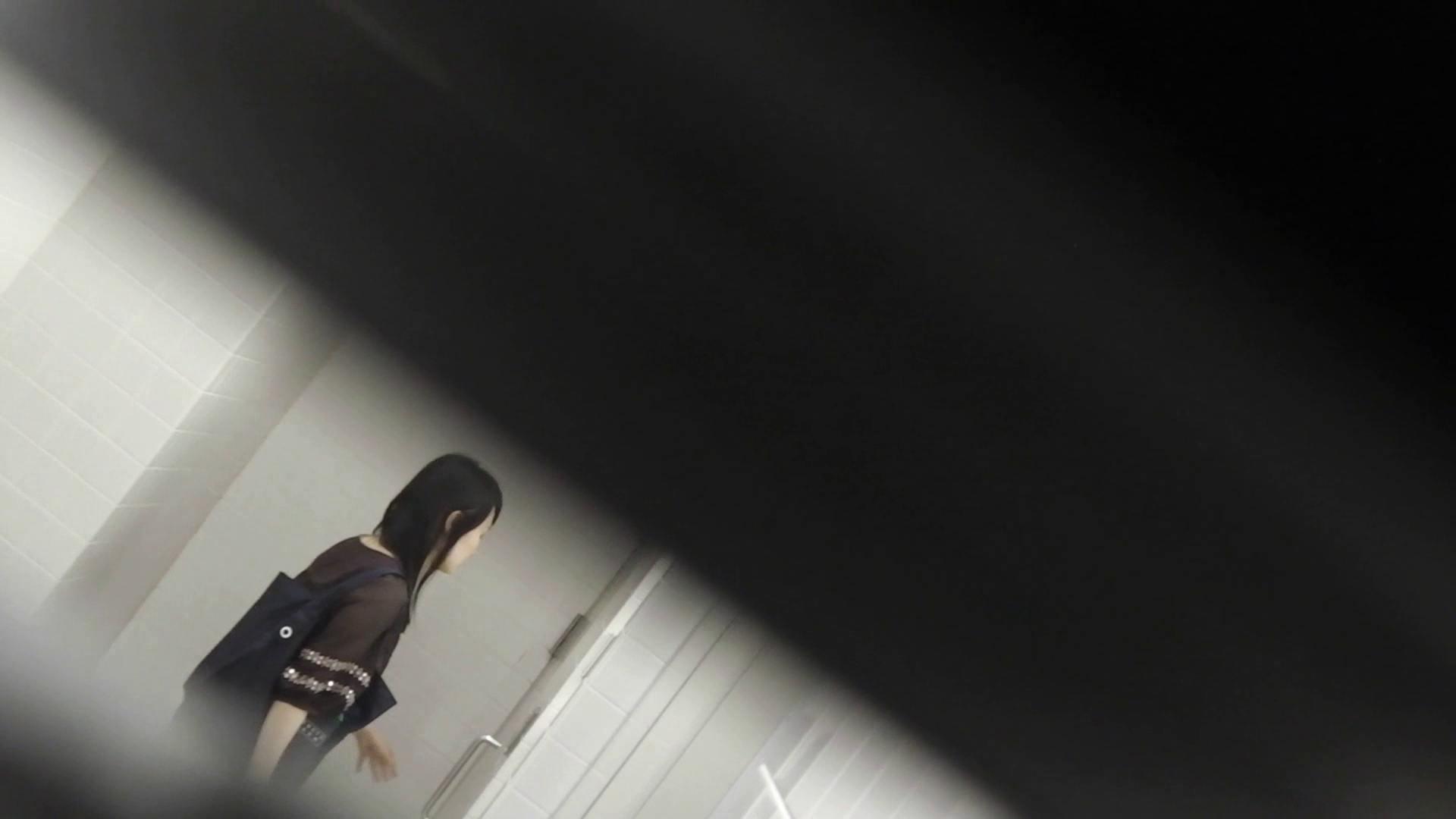 洗面所特攻隊 vol.001 清楚な美脚さん 洗面所   OL女体  104連発 69