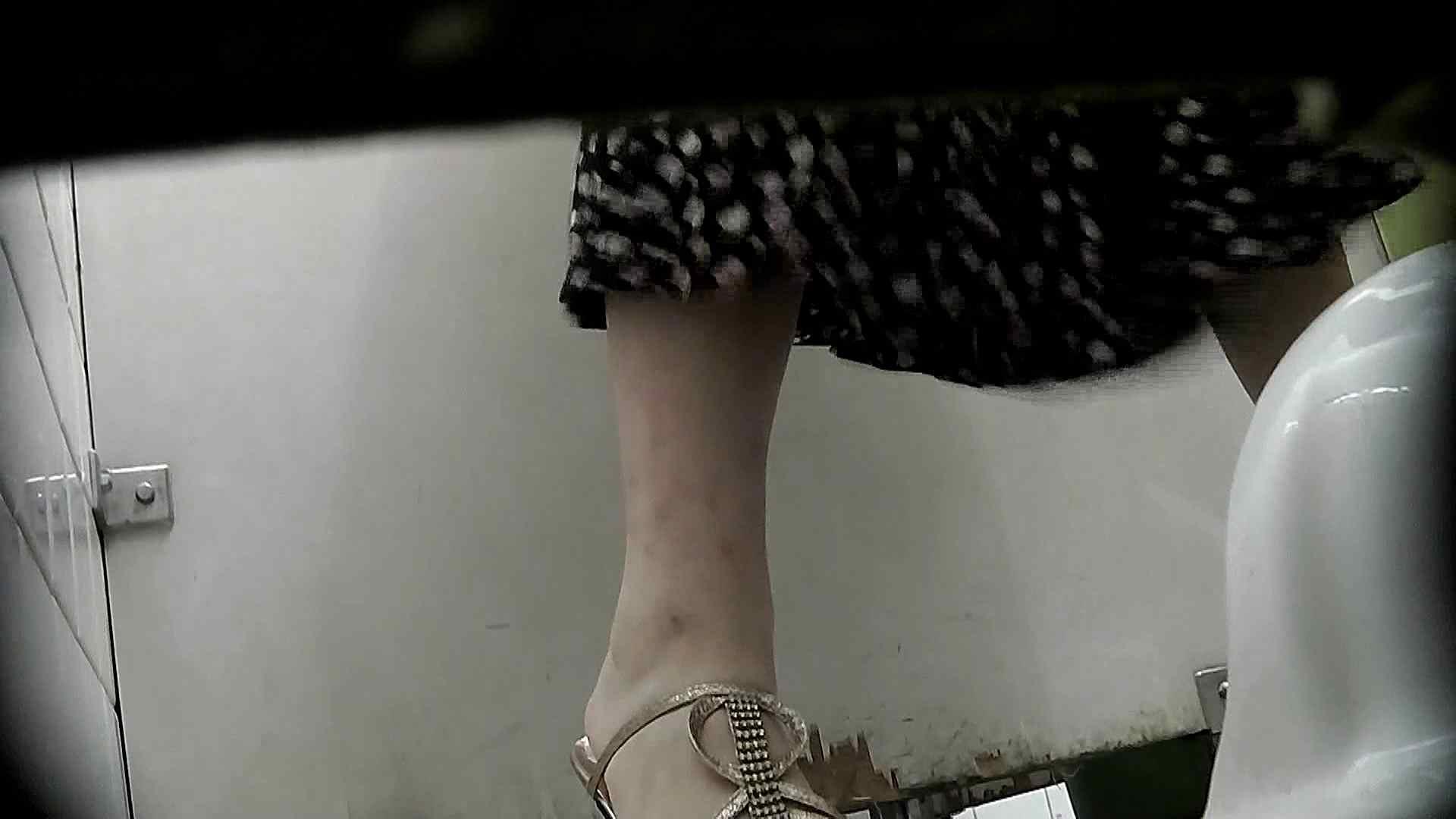 洗面所特攻隊 vol.X さらば!!特攻隊。【2015・08位】 洗面所   OL女体  64連発 17