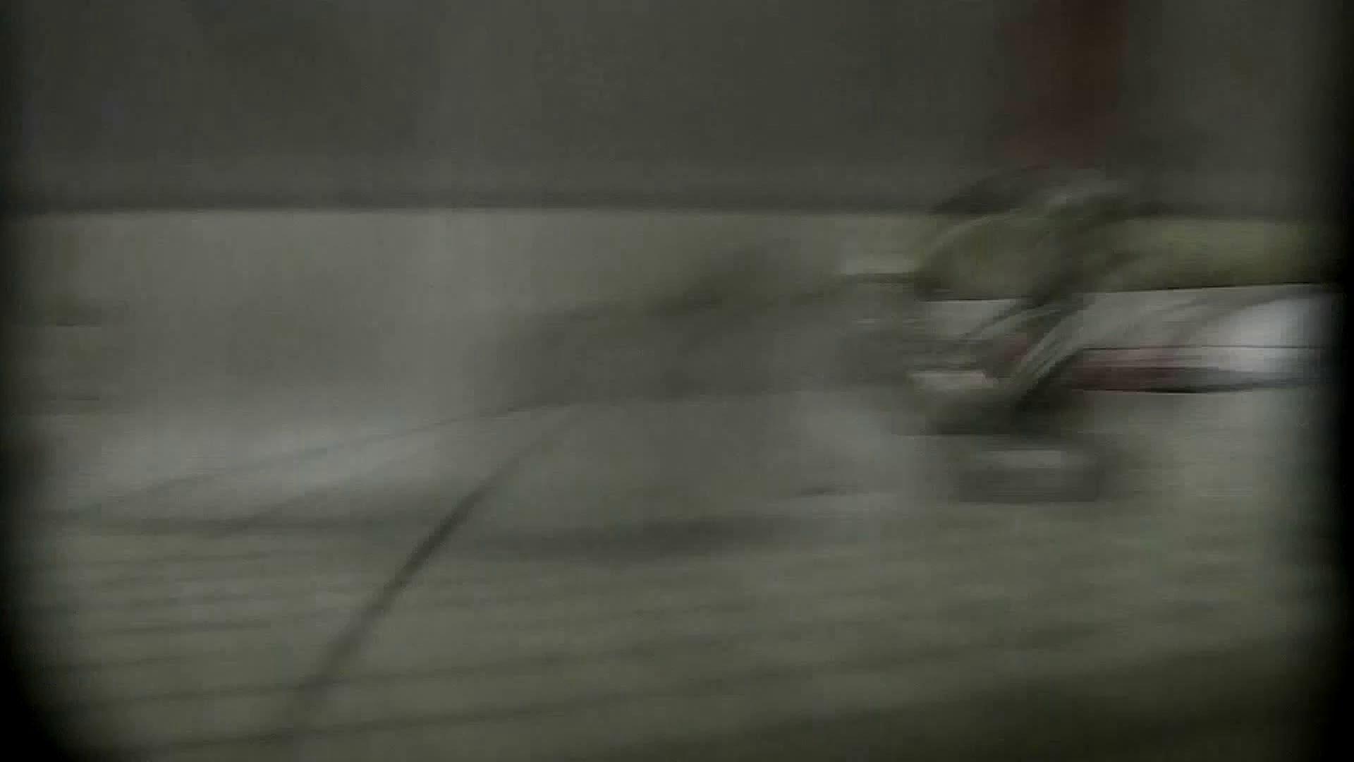洗面所特攻隊 vol.X さらば!!特攻隊。【2015・08位】 洗面所   OL女体  64連発 27
