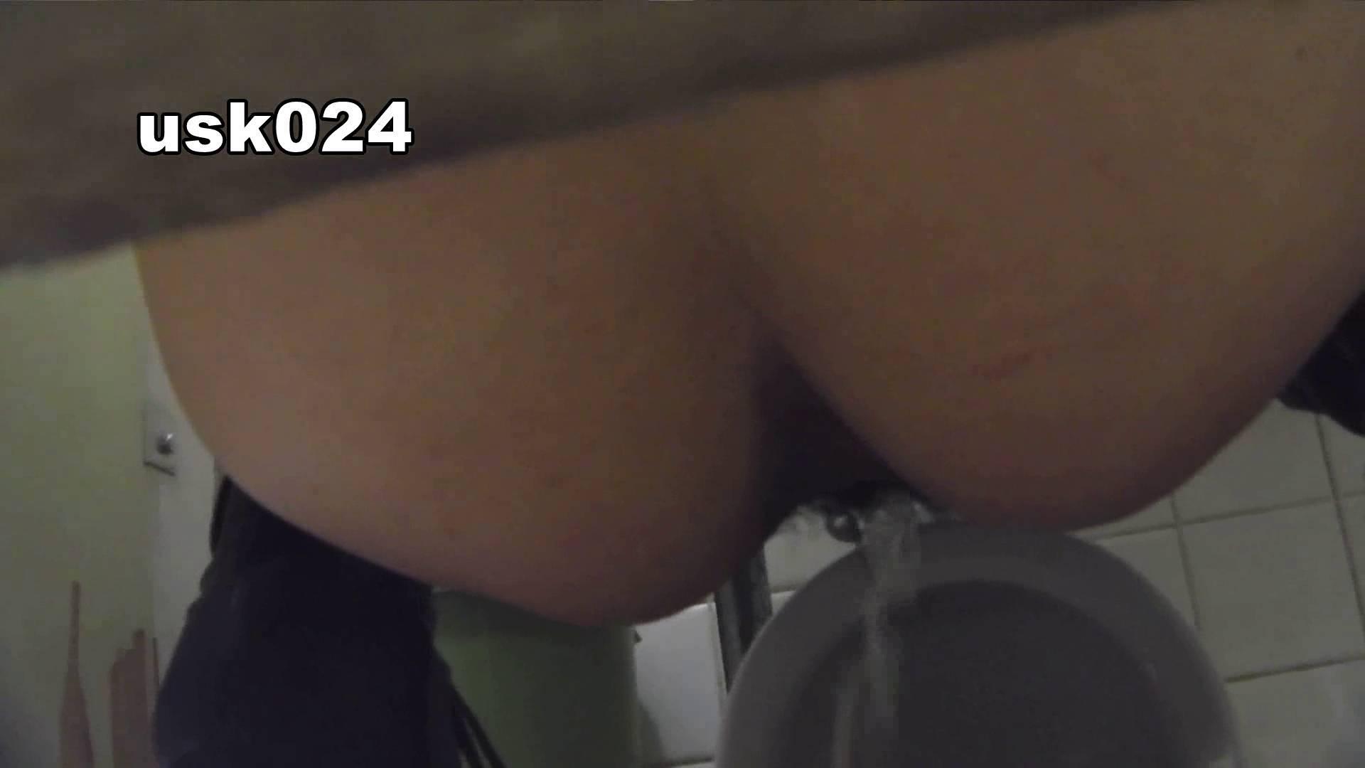 洗面所特攻隊 vol.024 (*´Д`)ハァハァ OL女体  48連発 16