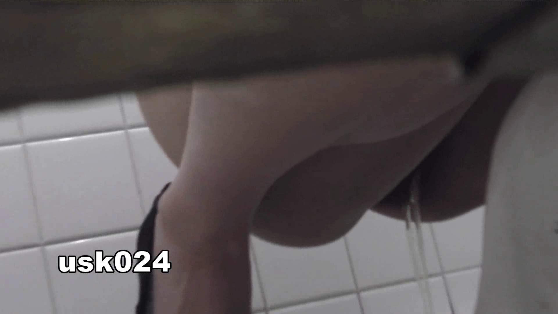 洗面所特攻隊 vol.024 (*´Д`)ハァハァ OL女体   洗面所  48連発 33