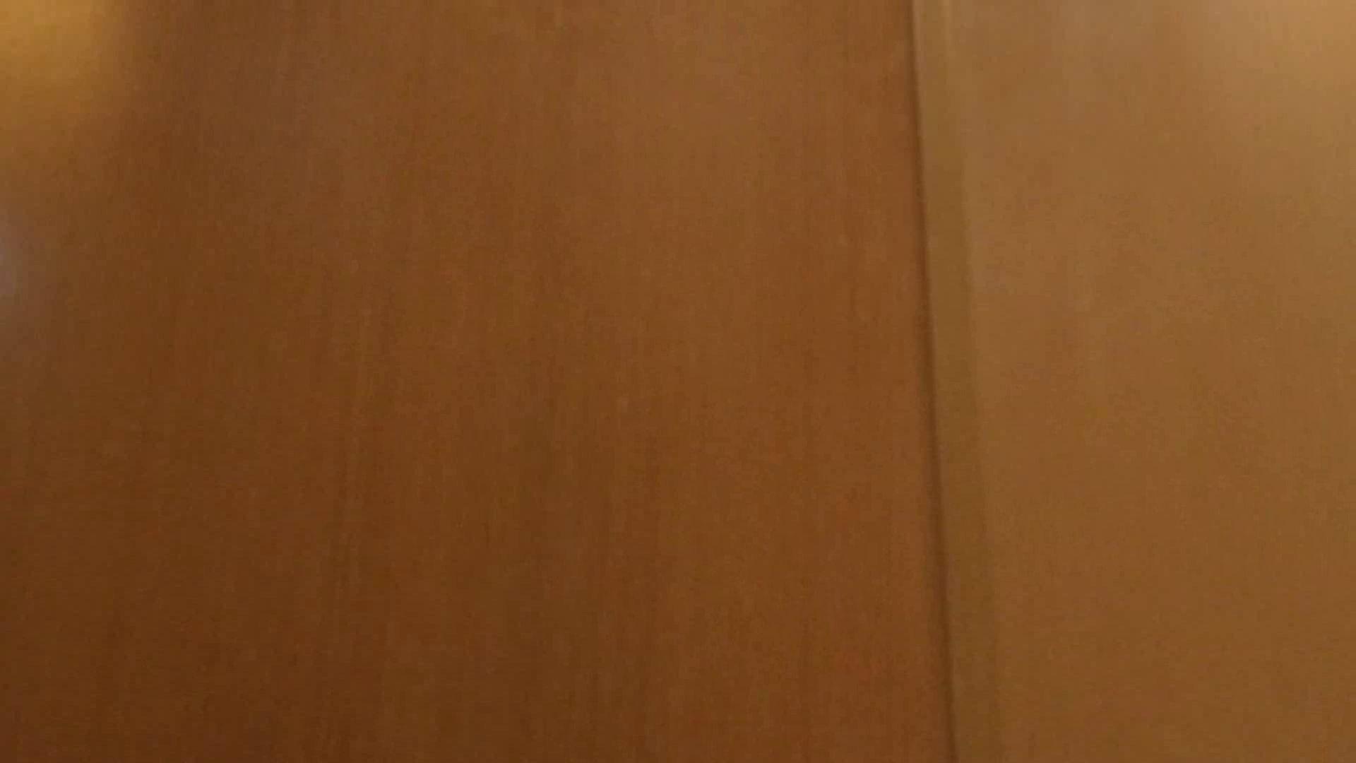 隣国化粧室下から御免!! No.02 美女  89連発 88