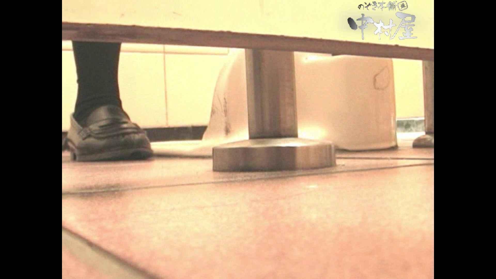 岩手県在住盗撮師盗撮記録vol.05 厠 盗み撮りSEX無修正画像 51連発 12