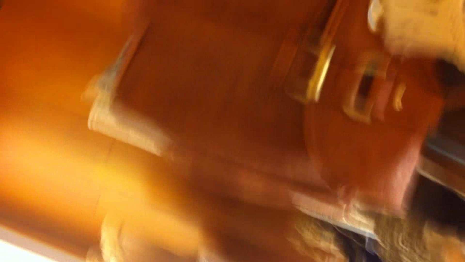 フルHD ショップ店員千人斬り! 大画面ノーカット完全版 vol.22 チラ 隠し撮りおまんこ動画流出 55連発 17