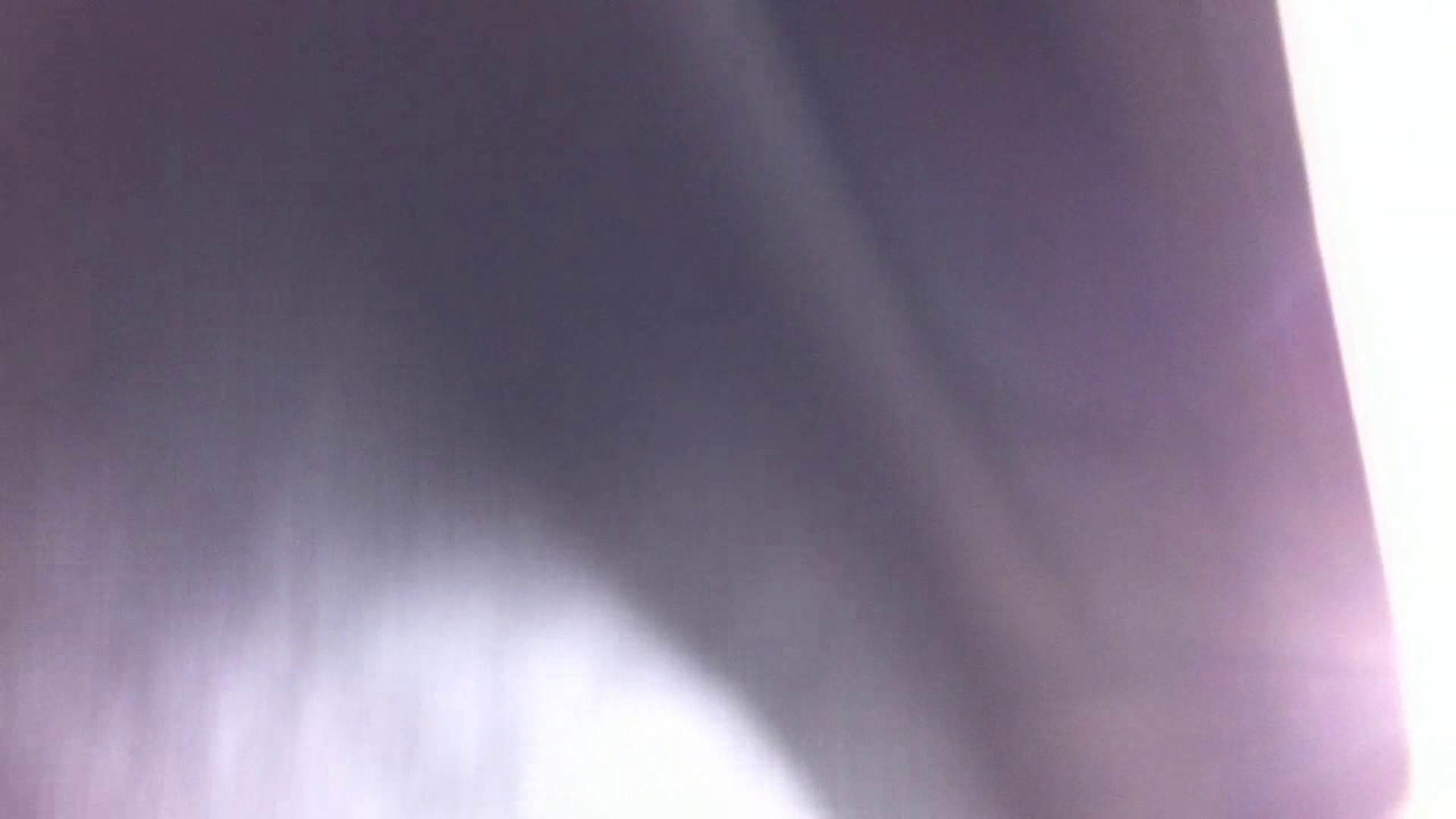 フルHD ショップ店員千人斬り! 大画面ノーカット完全版 vol.67 チラ 盗み撮りSEX無修正画像 55連発 48