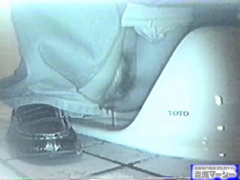 臨海公園和式接写映像! vol.01 OL女体 盗み撮り動画キャプチャ 106連発 106