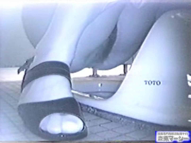 臨海公園和式接写映像! vol.02 OL女体 セックス画像 73連発 30
