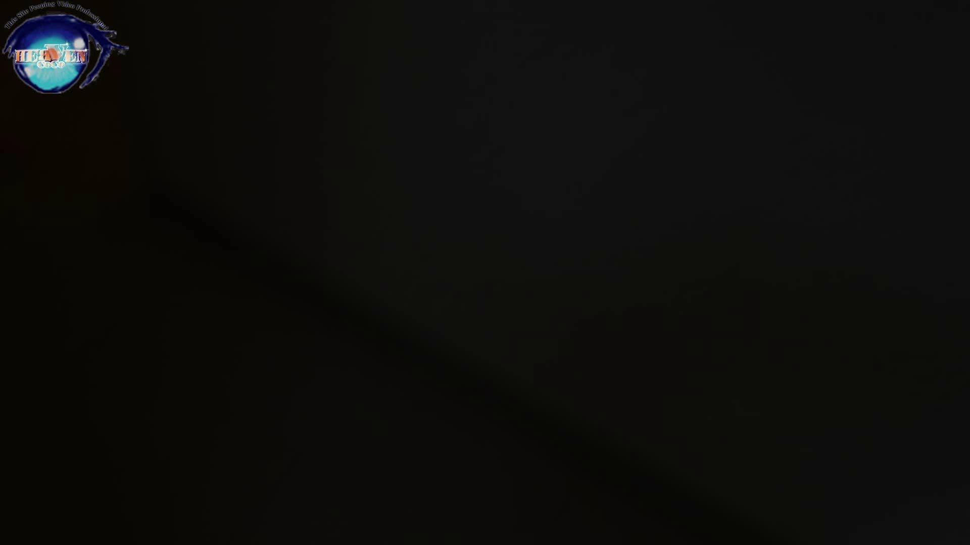 雅さんの独断と偏見で集めた動画集 厠編vol.07 厠  74連発 2
