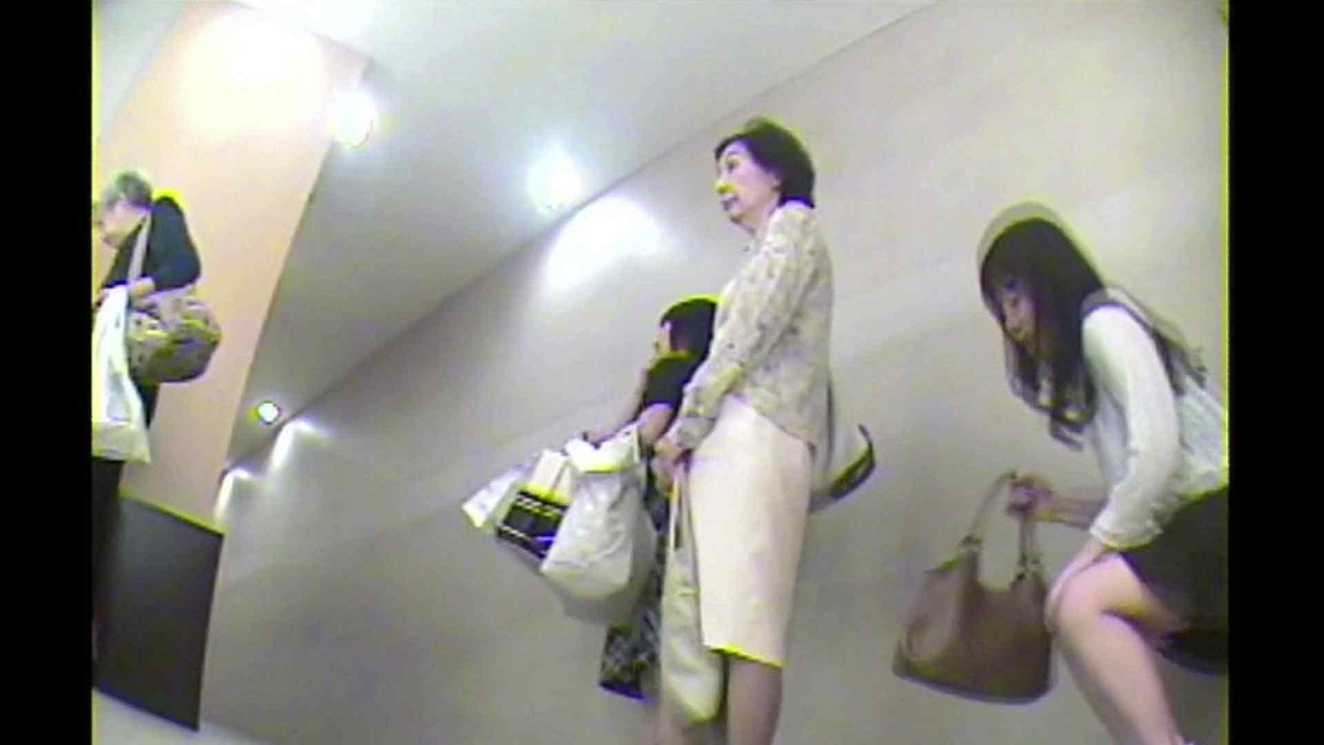 お漏らし寸前デパトイレ盗撮!Vol.02 OL女体 覗きおまんこ画像 64連発 2
