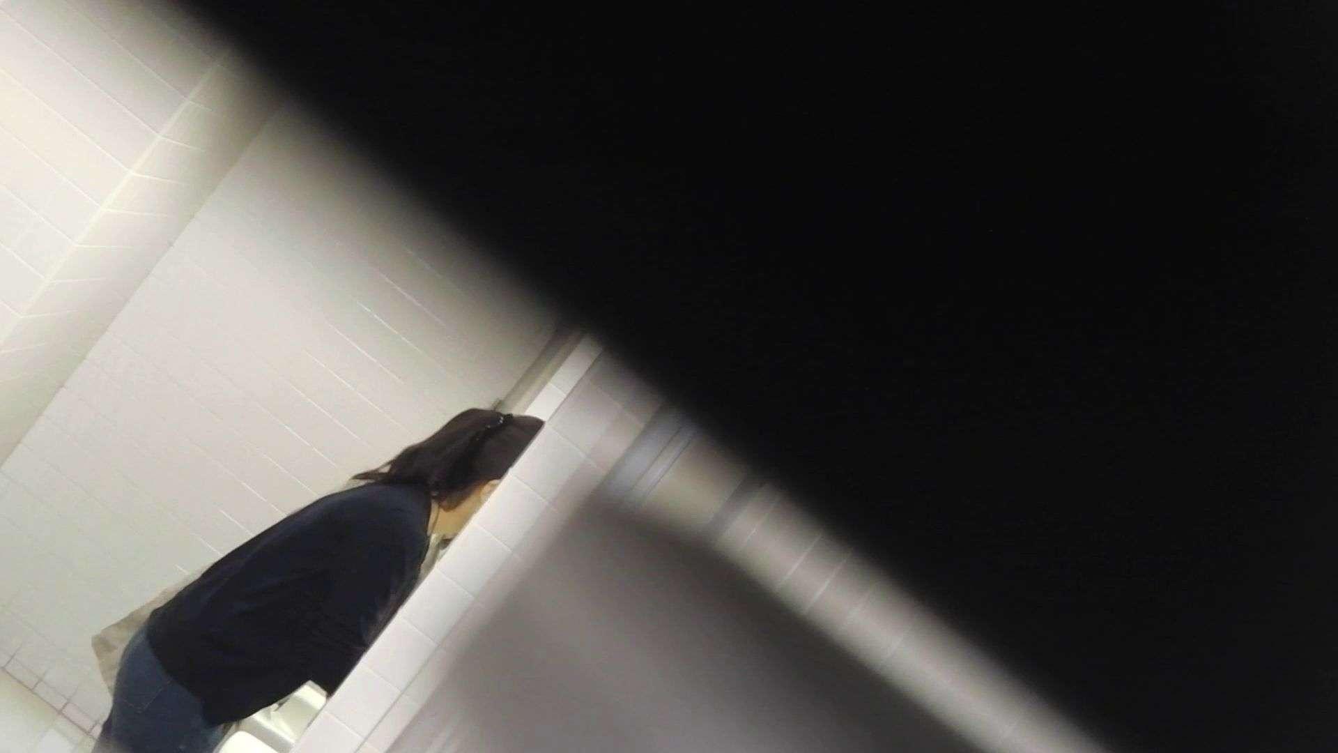 vol.11 命がけ潜伏洗面所! 多い日は大変です。 OL女体 隠し撮りオマンコ動画紹介 98連発 66