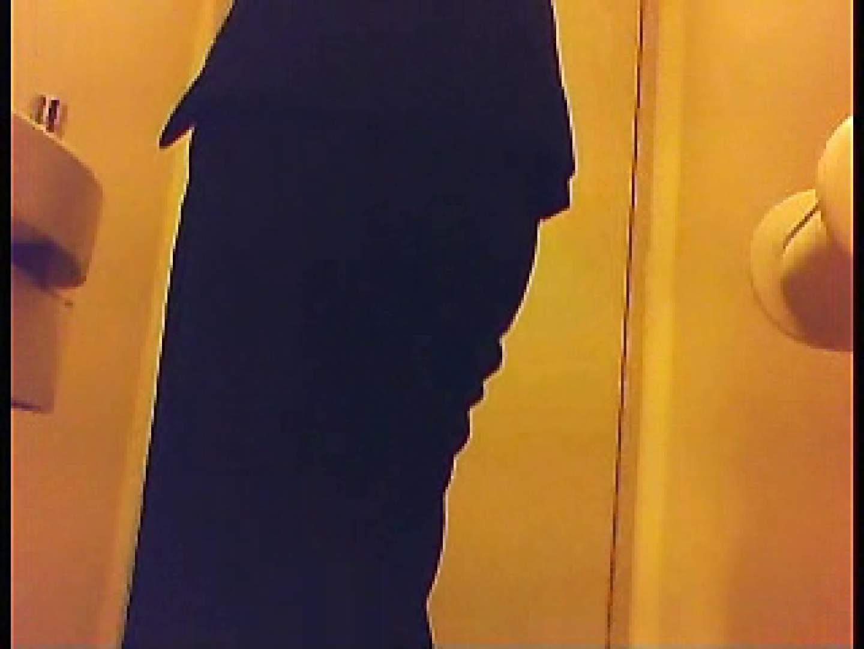 漏洩厳禁!!某王手保険会社のセールスレディーの洋式洗面所!!Vol.2 洗面所 おめこ無修正画像 76連発 18