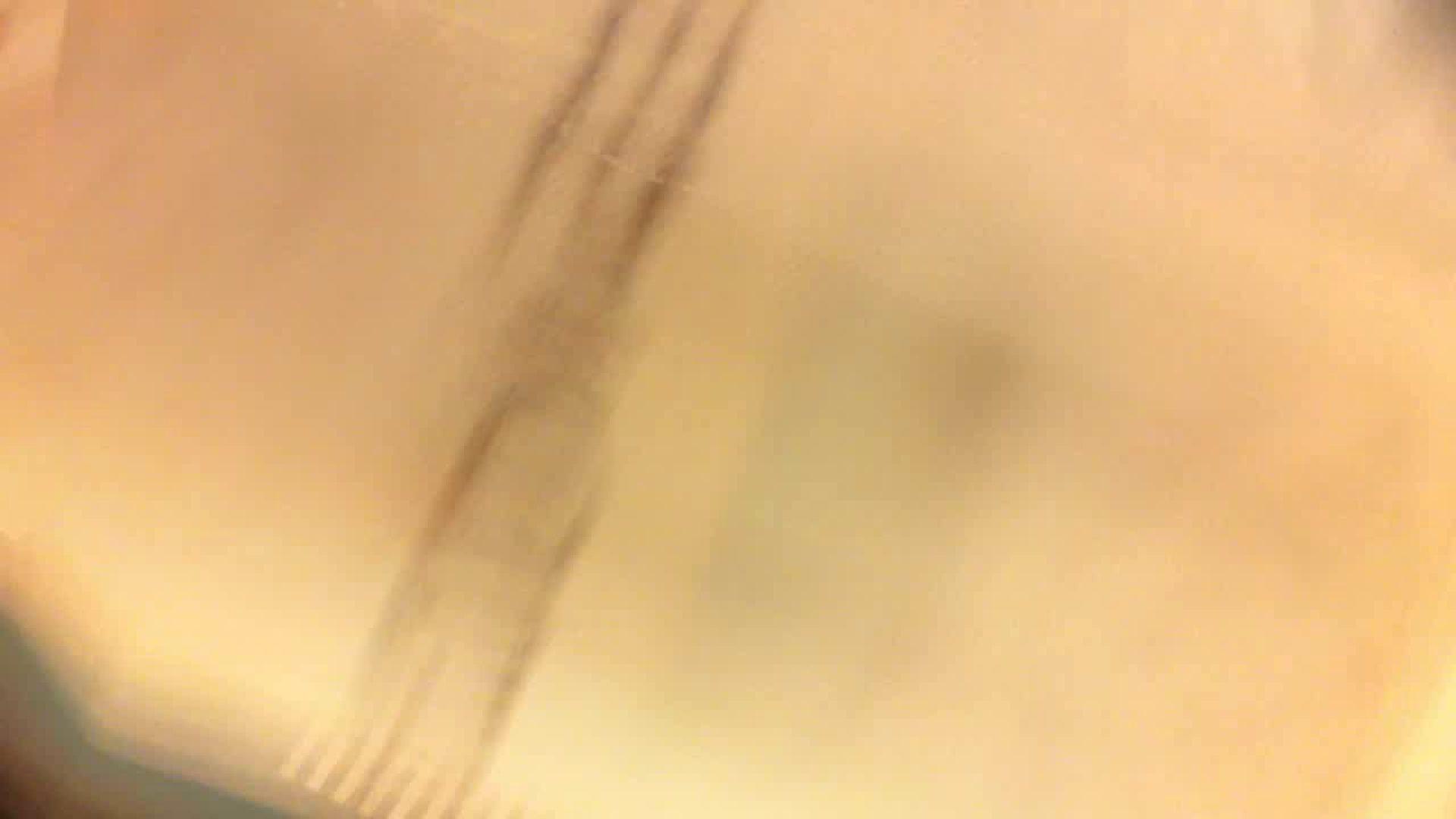 フルHD ショップ店員千人斬り! 大画面ノーカット完全版 vol.01 OL女体 隠し撮りオマンコ動画紹介 65連発 62